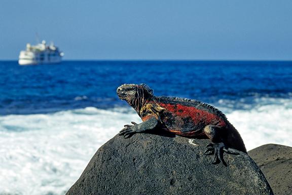 Kreuzfahrt im Galápagos Archipel