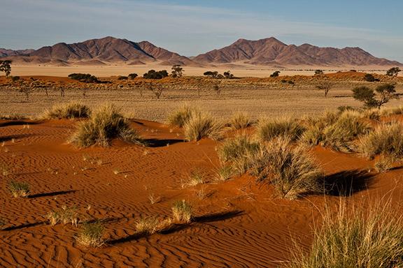 Trekkingabenteuer in der Namib: Der Tok Tokkie-Trail