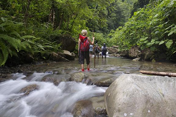 Dschungelabenteuer in der Selva Bananito Lodge