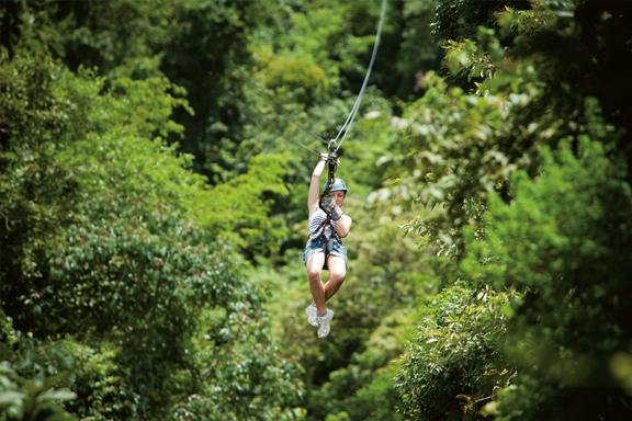 Canopy bei Pakse: An Stahlseilen über Baumkronen fliegen