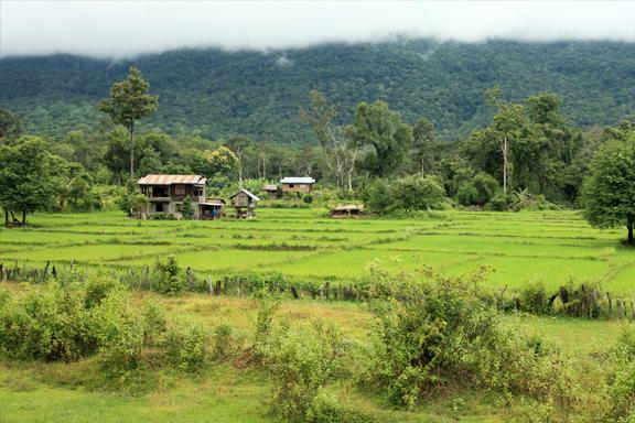 Fruchtbares Bolaven-Plateau und Tempelkomplex Wat Phou