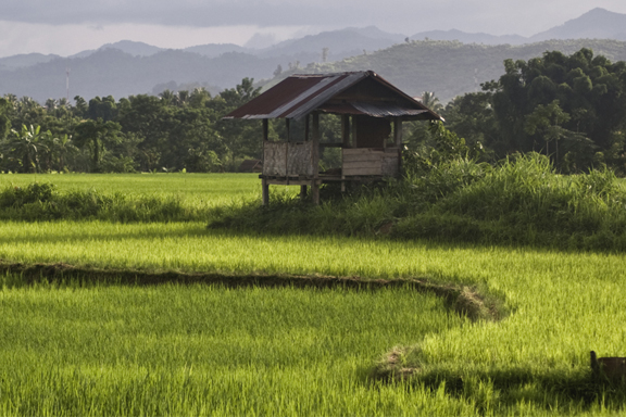 Trekkingparadies Luang Namtha