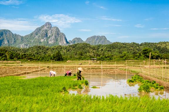 Überland von Vientiane nach Pakse