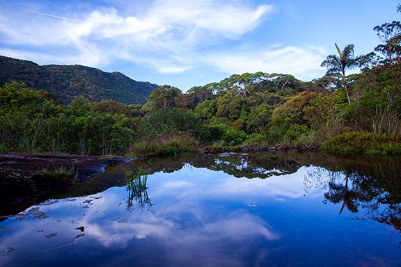 Abenteuer pur im Sinharaja Regenwald