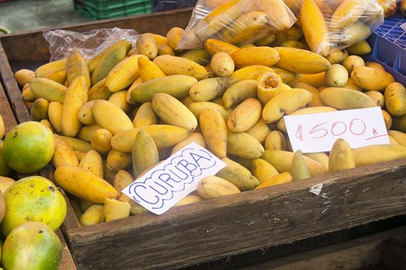 San José mit Marktbesuch