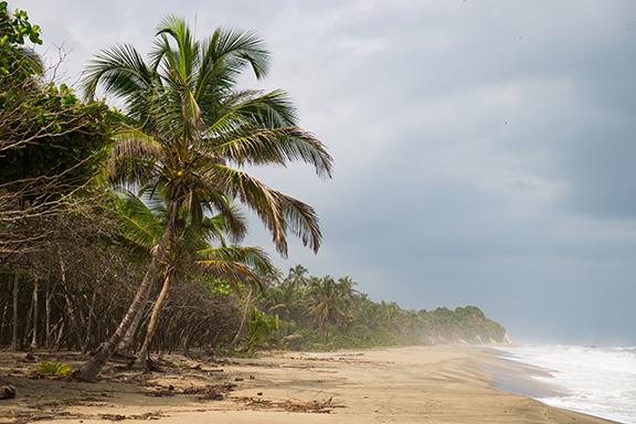 Naturparadies Nuquí am Pazifik