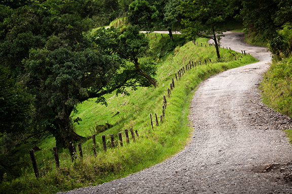 Auf Hängebrücken durch den Nebelwald von Monteverde
