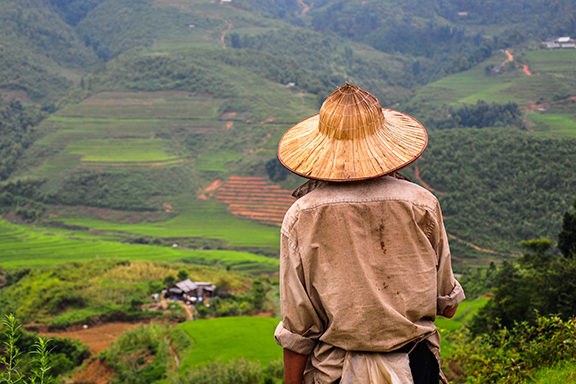 Von der Nordküste bis zur märchenhaften Insel Phu Quoc