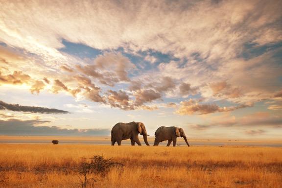 Südafrika mit eSwatini (Swasiland) und Lesotho