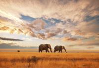 Südafrika mit Swasiland und Lesotho