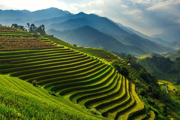 Vietnam und Kambodscha Vagabunt