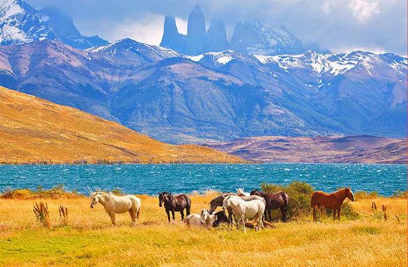 Argentinien, Chile und Brasilien