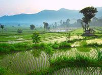 Indonesien: Java und Bali