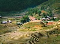 Vietnam mit Verlängerung Kambodscha ComfortPlus
