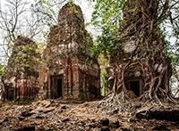 INSIGHT Kambodscha